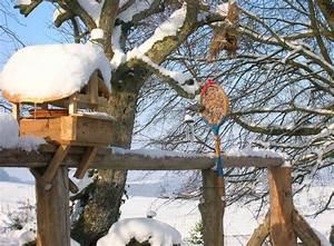 Abreuvoir A Oiseaux Pour Jardin : cabanons d 39 oiseaux nichoirs abreuvoirs mangeoires en photographies bien etre des oiseaux ~ Melissatoandfro.com Idées de Décoration