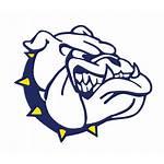 Mascot Gold Kettle Falls Bulldogs Logos Mascots