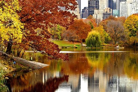 brownstone for sale nyc autumn in york escola de idiomas galdomara