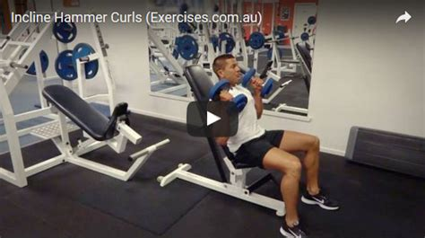 Incline Hammer Curls Exercisescomau