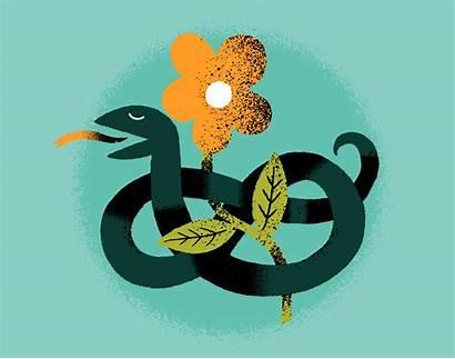 Snake Vector Flower Vecteezy Clipart Vectors
