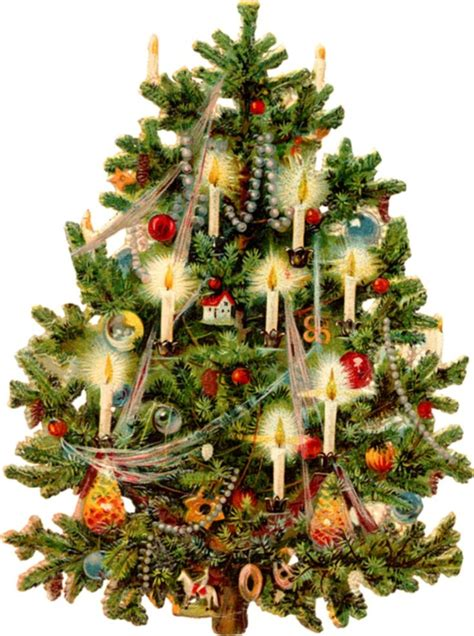 ernst freihoff germany christmas tree 800x1066