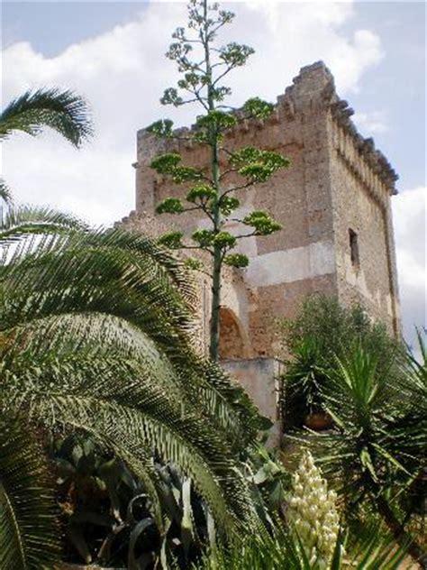 Pug Porto Cesareo by La Natura Picture Of Masseria Fortificata Torre