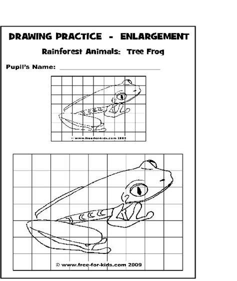 drawing practice enlargement animal sheets grid art