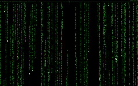Animated Matrix Wallpaper - moving matrix code wallpaper wallpapersafari