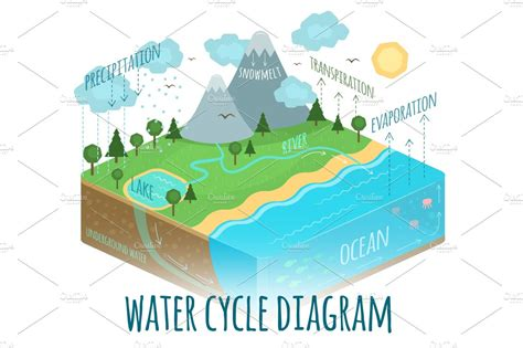 water cycle diagram illustrations creative market