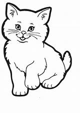 Cat Coloring Pages Kitty Colouring Cats Printable Colour Sheets Sheet Printables Cartoon Kitten Kittens Para Picyure Template Clipart Desenhar Dog sketch template