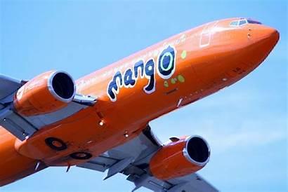 Mango Airplane Airline Aircraft Wing Orange Airbus
