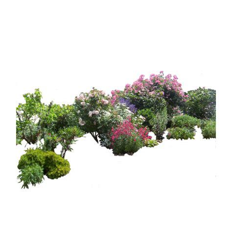 flowers bush bushes garden atladymariacristina