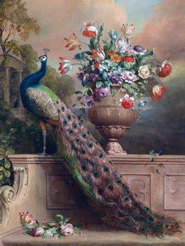 peacock paintings prints vintage venus july