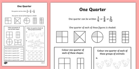 Fractions Quarters Activity Sheet  Numeracy, Place Value