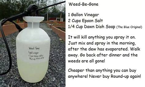 diy killer that really works the