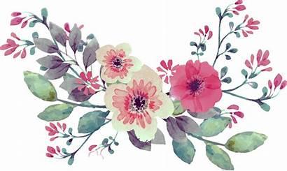 Watercolor Flower Flowers Floral Watercolour Background Bouquet