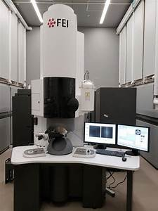 scanning electron microscope thermo fisher formerly fei titan themis g2 200 probe cs