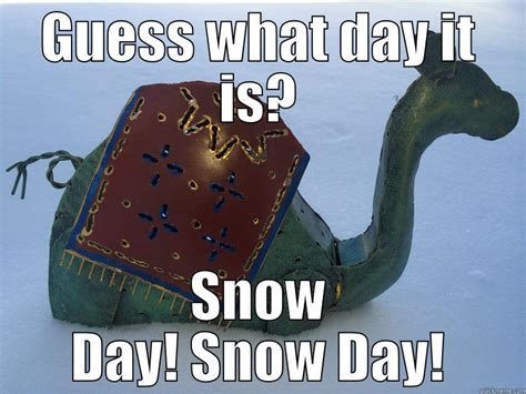 Snow Day Memes - hump day funny pictures with captions memes