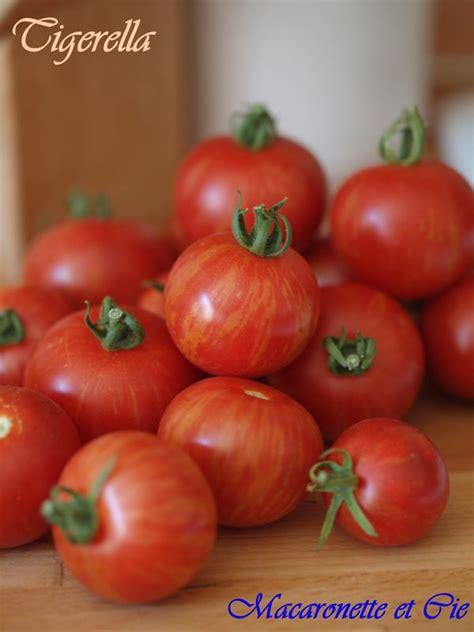 cuisiner les tomates vertes gelée de tomates vertes sans effort