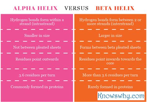 difference between alpha helix and beta helix knowswhy