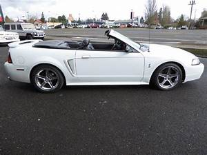2001 Ford Mustang SVT Cobra Convertible for Sale   ClassicCars.com   CC-964811