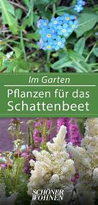 Kübelpflanzen Für Schatten : schattenpflanzen k belpflanzen im schatten schattenpflanzen im garten und auf dem balkon p ~ Eleganceandgraceweddings.com Haus und Dekorationen
