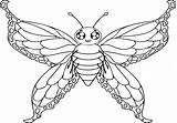Moth Coloring Pages Printable Getdrawings Getcolorings sketch template