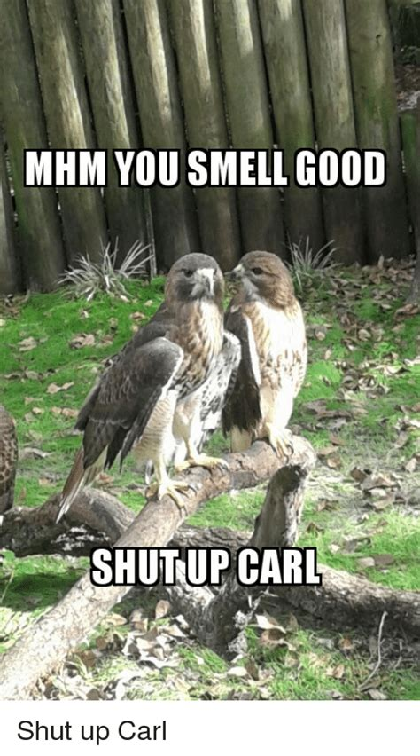 Row Row Your Boat Shut Up Carl by Search Shut Up Carl Memes On Me Me