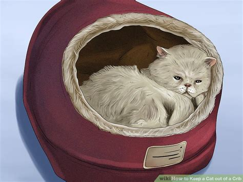 Keep Cats Out Of Crib by 3 Ways To Keep A Cat Out Of A Crib Wikihow