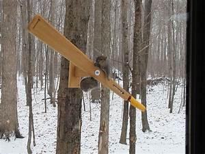 Wooden Squirrel Proof Bird Feeder Plans Plans DIY Free