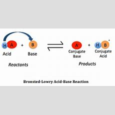 Bronstedlowry Acid Definition & Examples  Video & Lesson Transcript Studycom