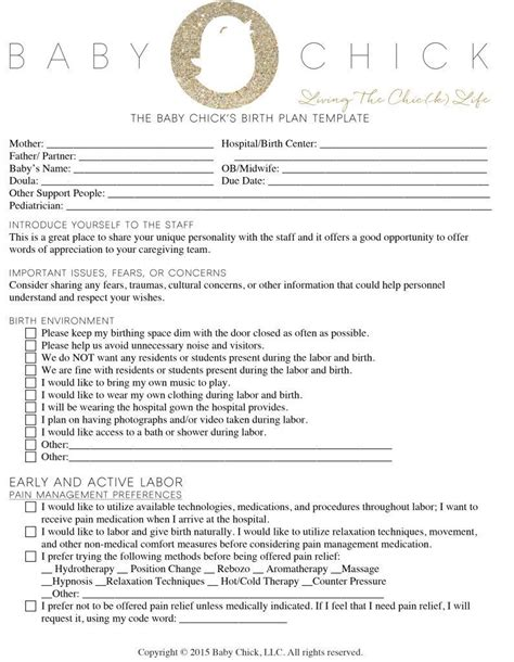 birth plan template how to create your birth plan baby