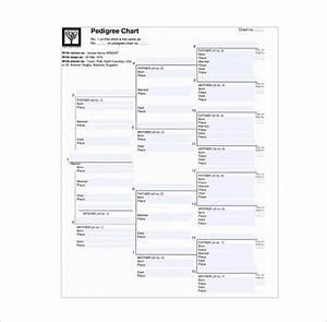 10  Pedigree Chart Templates
