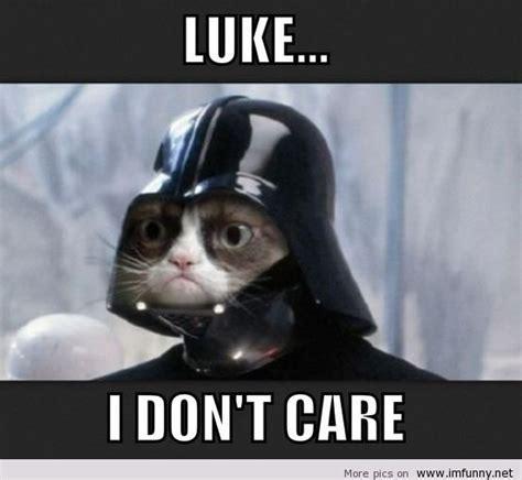 Funniest Memes 2013 - new memes cat
