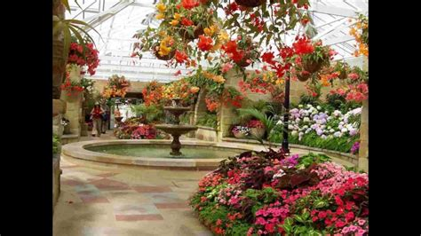 colores en el jardin hd  arte  jardineria diseno de