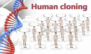 Cloning Humans Essay: Ethics, Use And Playing God