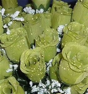 Amazon 84 Silk Rose Flowers w Raindrops Wedding