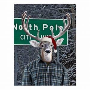 Funny, Deer, Wearing, Santa, Hat, At, North, Pole, Postcard