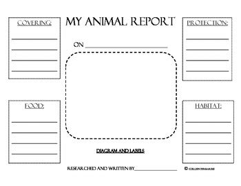 animal research report graphic organizers  colleen