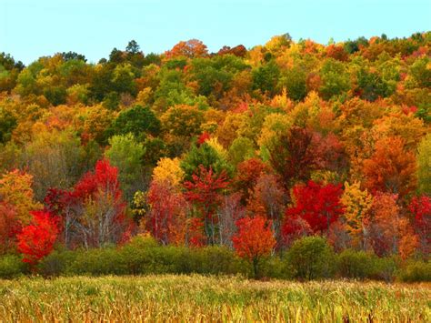 Best Fall Foliage In The Us  Travelchannelcom Travel