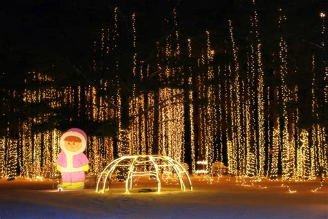 Carnival Lights by 11 Best Light Displays In Wisconsin 2016
