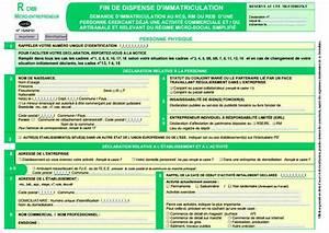 Auto Entrepreneur Kbis : auto entrepreneurs immatriculez vous avant le 19 12 15 ~ Medecine-chirurgie-esthetiques.com Avis de Voitures