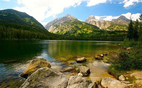 choisir pc de bureau nature humeur paysage lac montagne arbre glace brouillard
