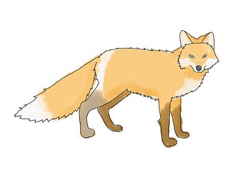 ways  draw  fox wikihow