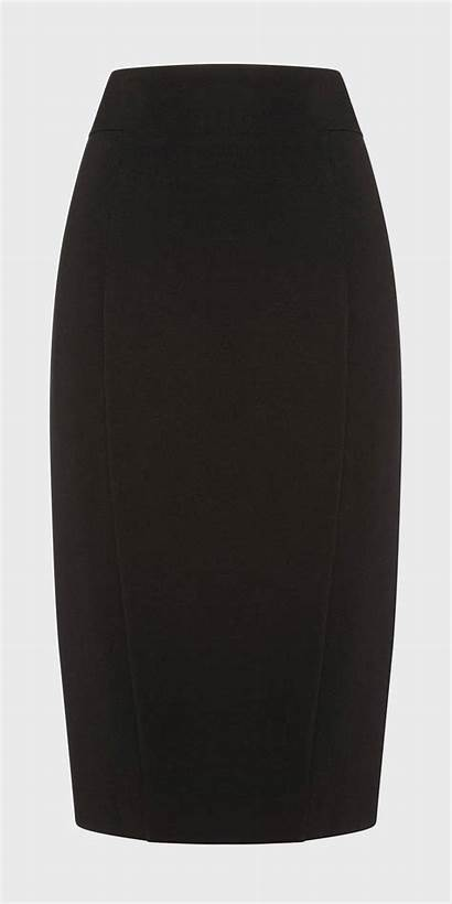 Panelled Pencil Skirt Skirts W20