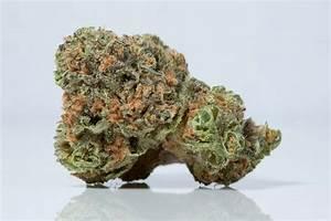 Pineapple Express Marijuana Related Keywords - Pineapple ...