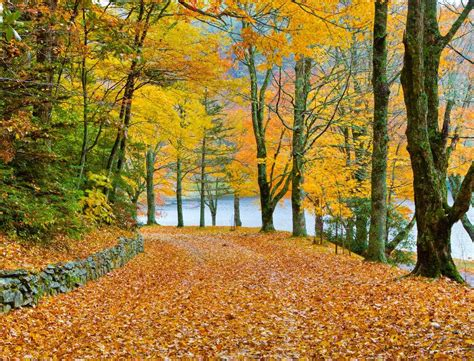 Banner Color Year Predicted Peak Fall Colors 2017 And Where