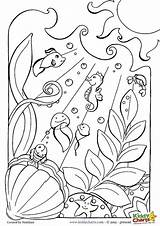 Ocean Coloring Pages Adults Printable Underwater Sea Colouring Creatures Floor Animals Sheets Animal Everfreecoloring Scene Printables Tennessee Getcolorings Zoo Detailed sketch template
