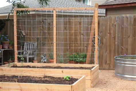 vertical trellis for box garden garden