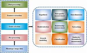 Frontiers | Advanced phenotyping and phenotype data ...