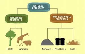 Par 6 3  Natural Resources
