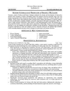 free resume sles by professional resume writer in