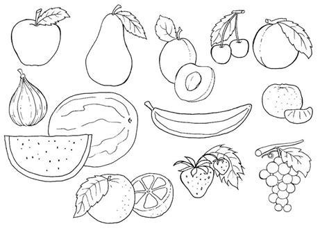 pin stampa disegno frutta mista colorare ajilbabcom portal